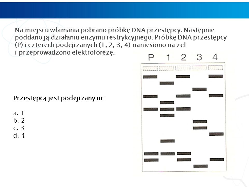 Na miejscu włamania pobrano próbkę DNA przestępcy