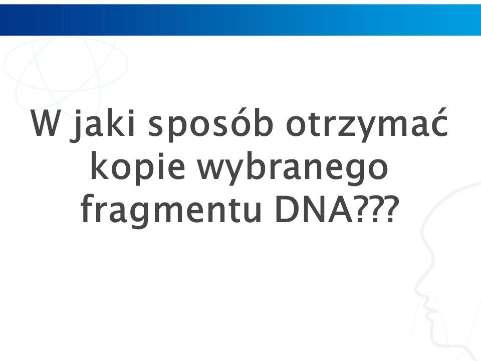 W jaki sposób otrzymać kopie wybranego fragmentu DNA