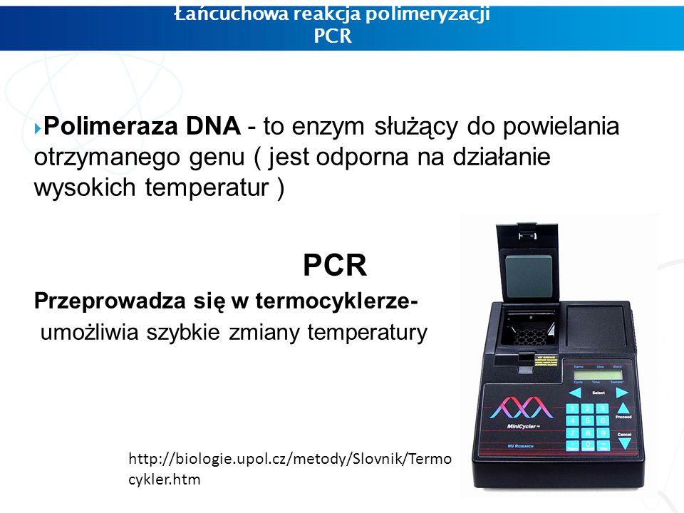 Łańcuchowa reakcja polimeryzacji PCR