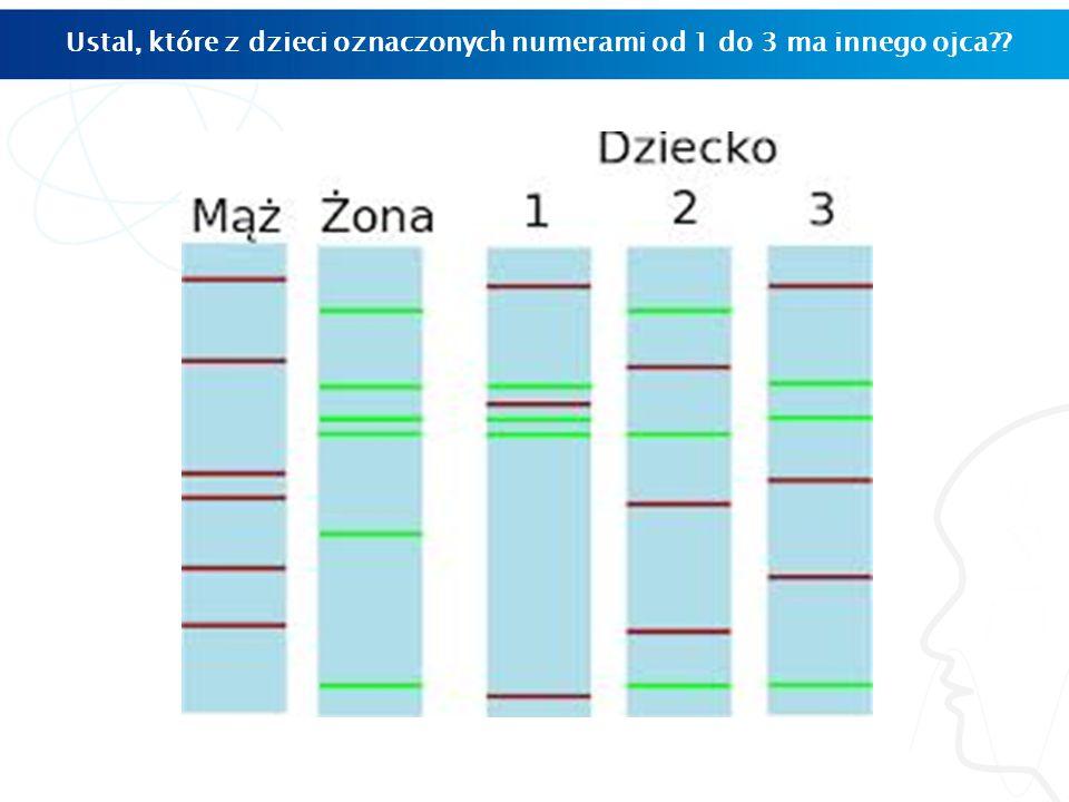 Ustal, które z dzieci oznaczonych numerami od 1 do 3 ma innego ojca