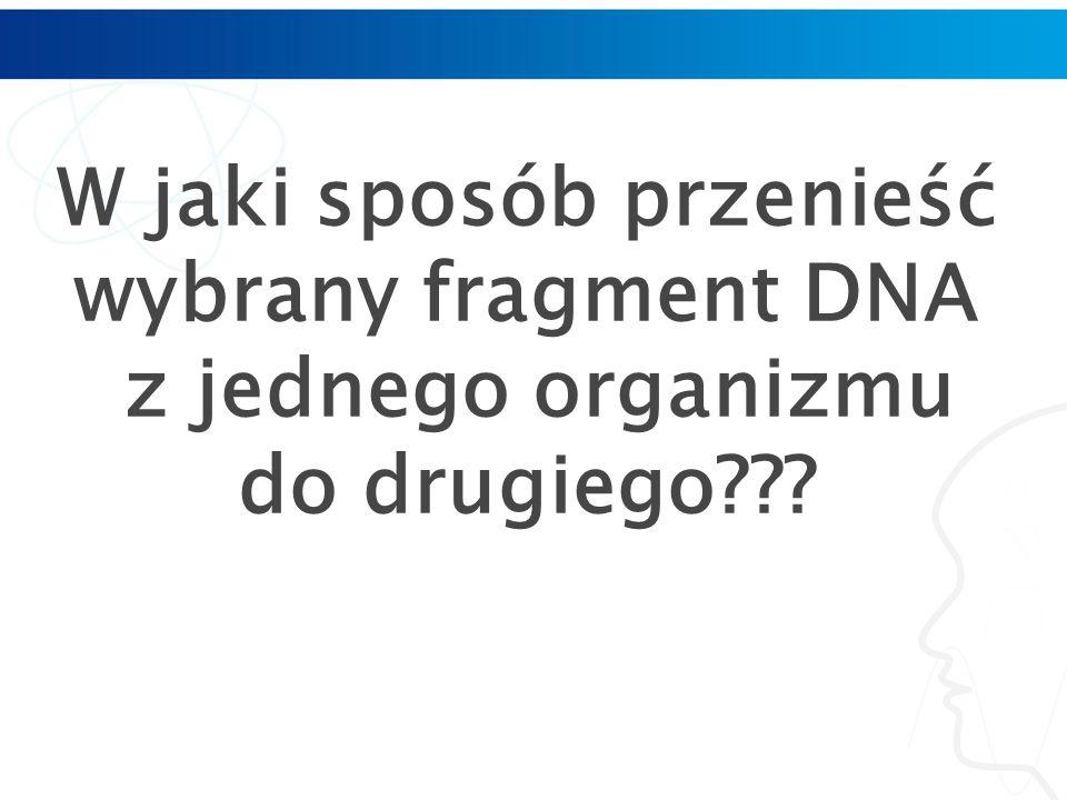 W jaki sposób przenieść wybrany fragment DNA z jednego organizmu do drugiego