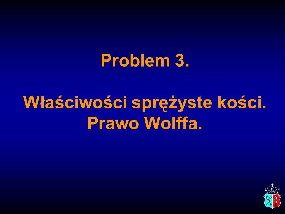 Problem 3. Właściwości sprężyste kości. Prawo Wolffa.
