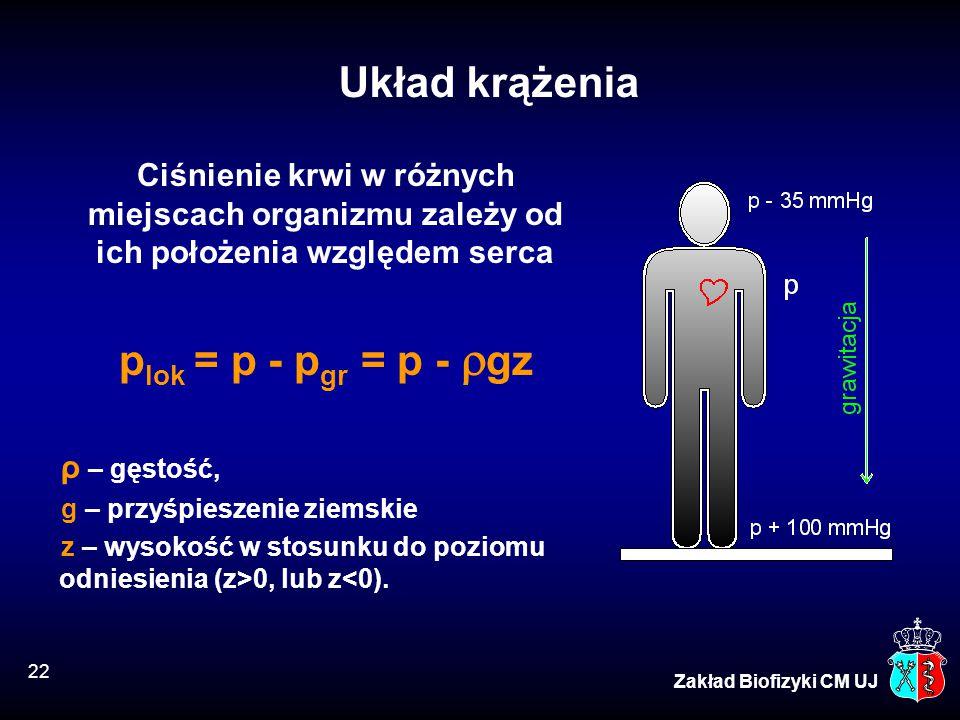 Układ krążenia plok = p - pgr = p - gz