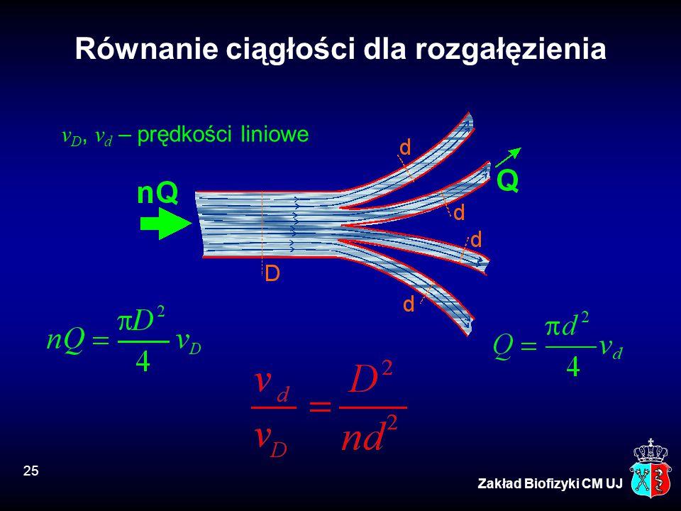 Równanie ciągłości dla rozgałęzienia