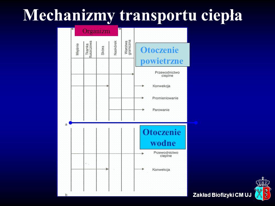 Mechanizmy transportu ciepła