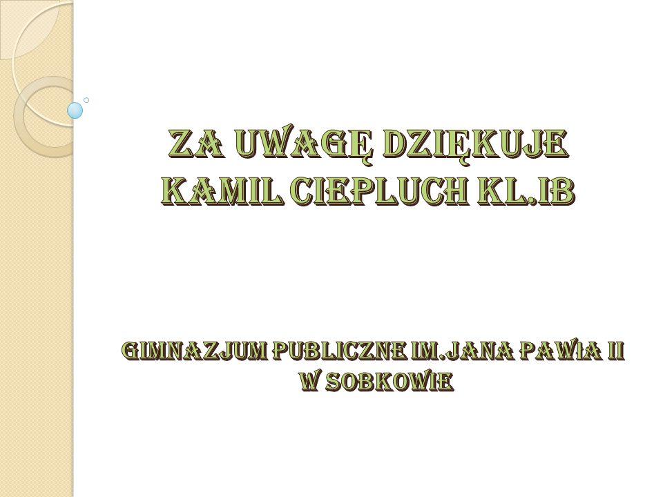 Gimnazjum publiczne im.jana pawła ii