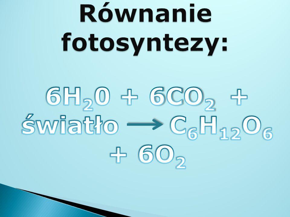 Równanie fotosyntezy: