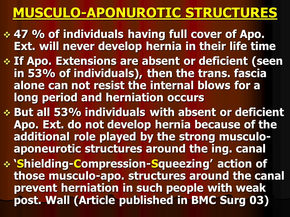 MUSCULO-APONUROTIC STRUCTURES