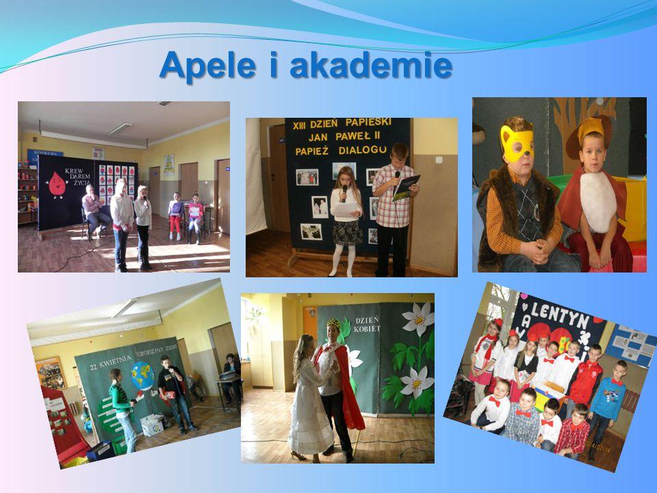 Apele i akademie