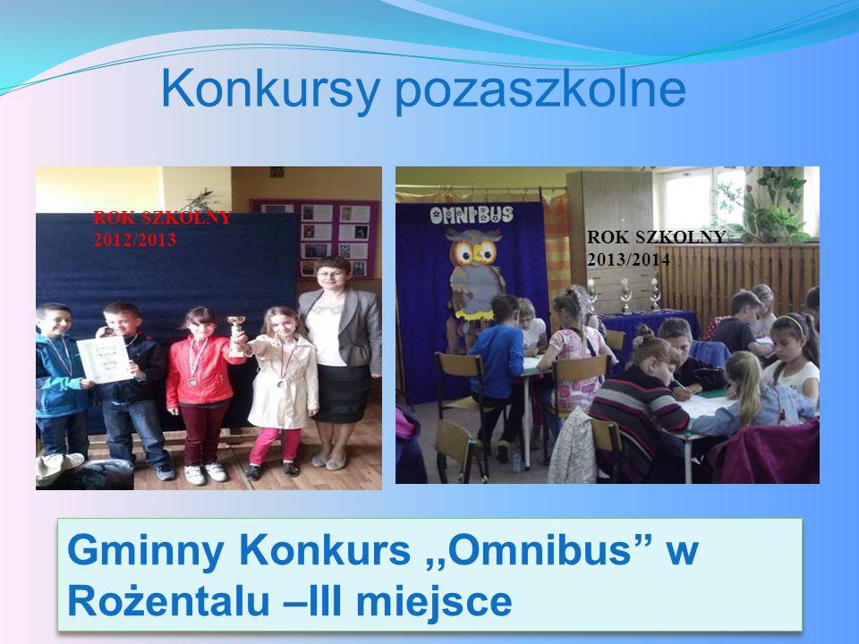Konkursy pozaszkolne ROK SZKOLNY 2012/2013. ROK SZKOLNY 2013/2014.