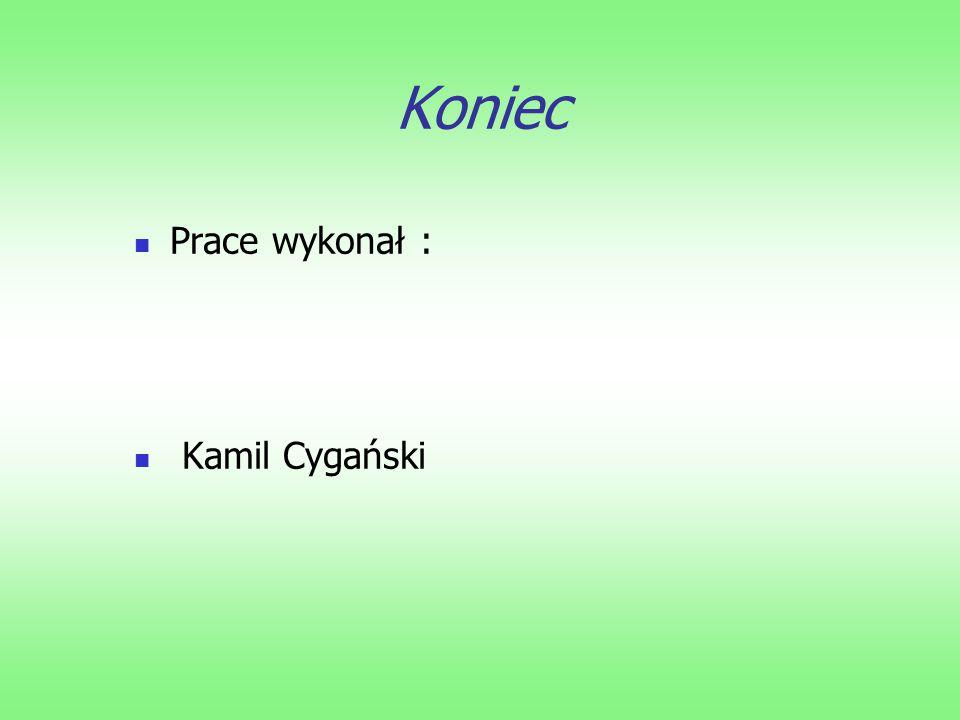 Koniec Prace wykonał : Kamil Cygański