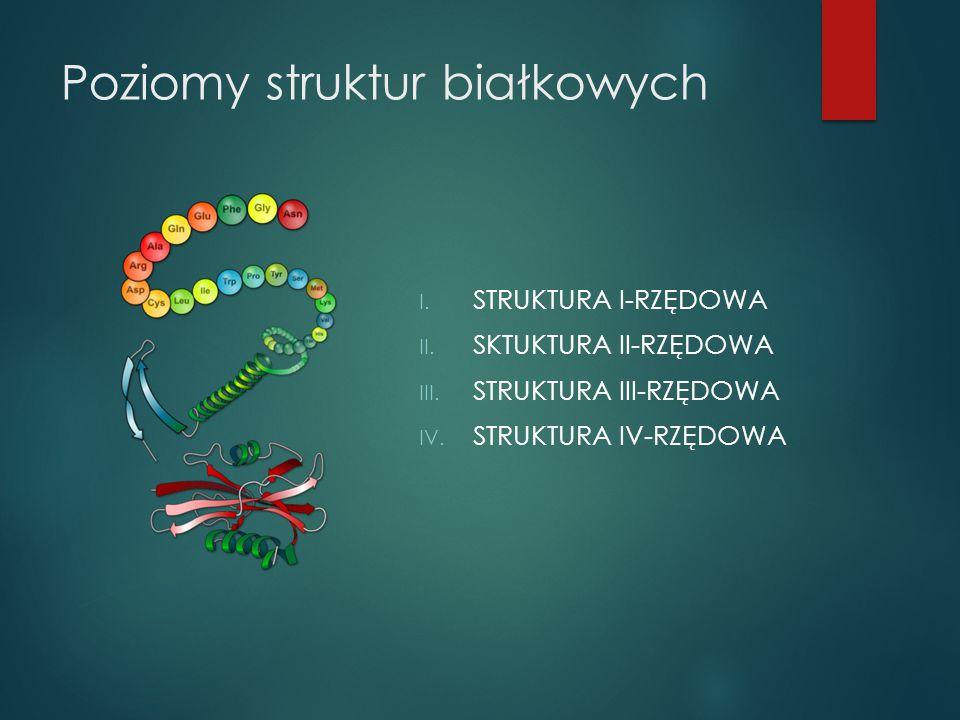 Poziomy struktur białkowych