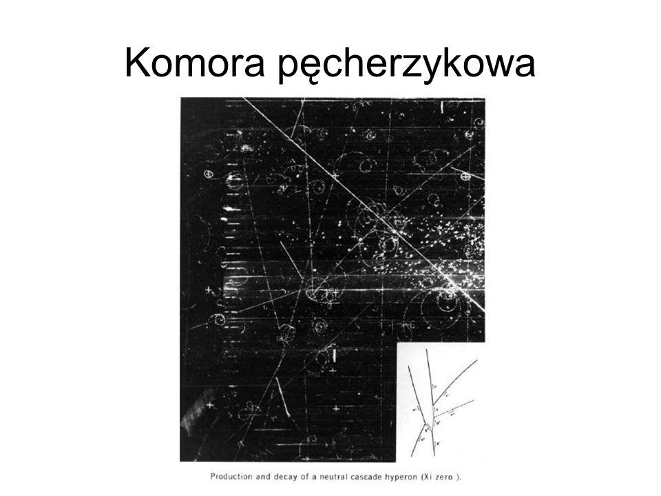 Komora pęcherzykowa