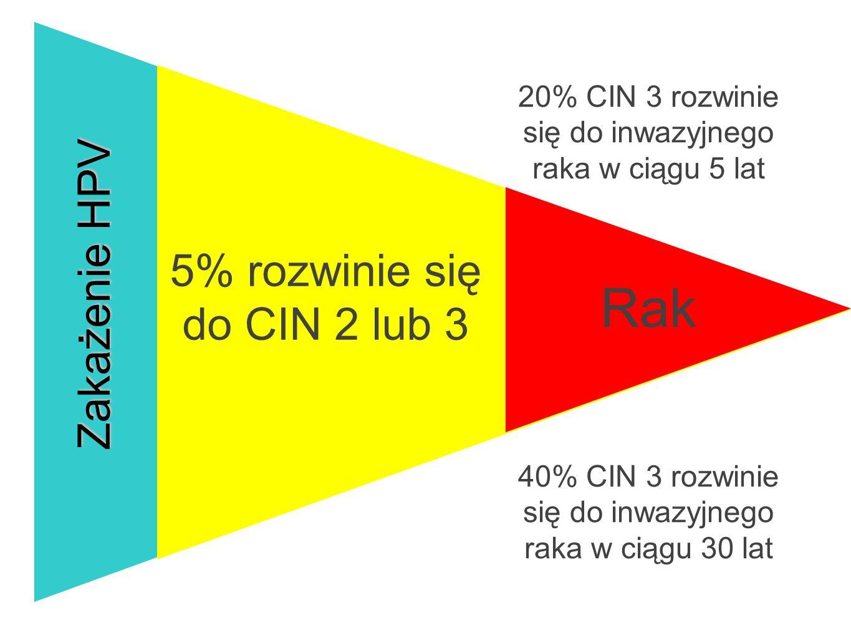 Rak Zakażenie HPV 5% rozwinie się do CIN 2 lub 3