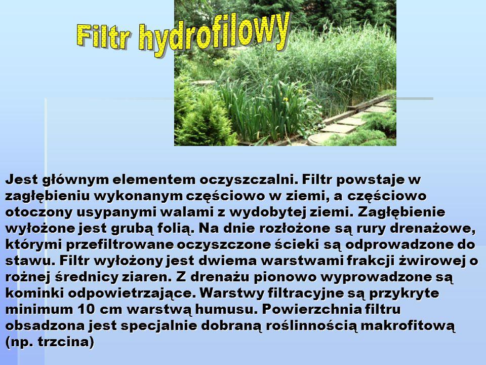 Filtr hydrofilowy