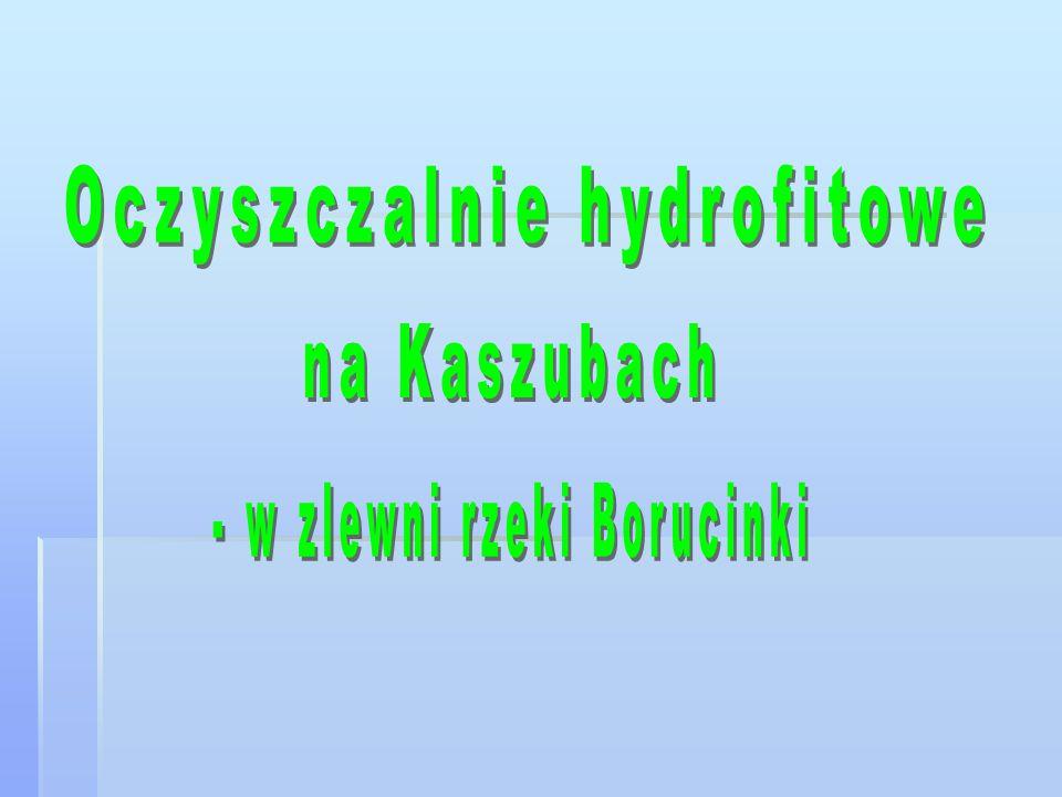 Oczyszczalnie hydrofitowe