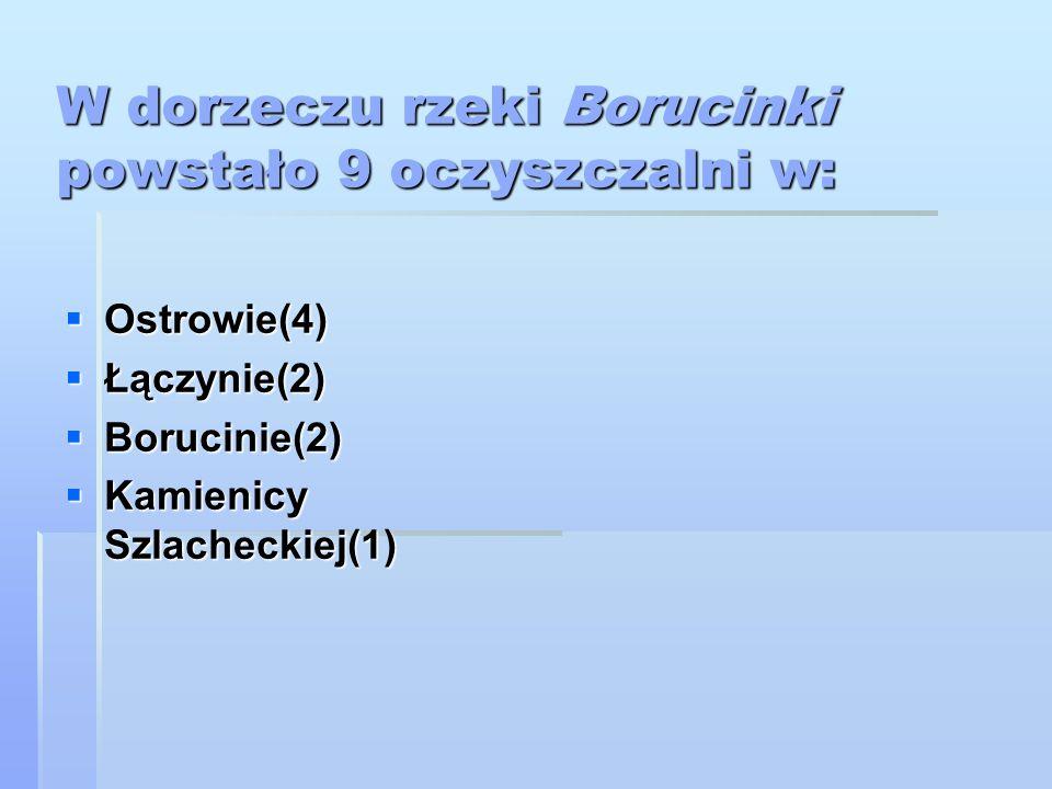 W dorzeczu rzeki Borucinki powstało 9 oczyszczalni w: