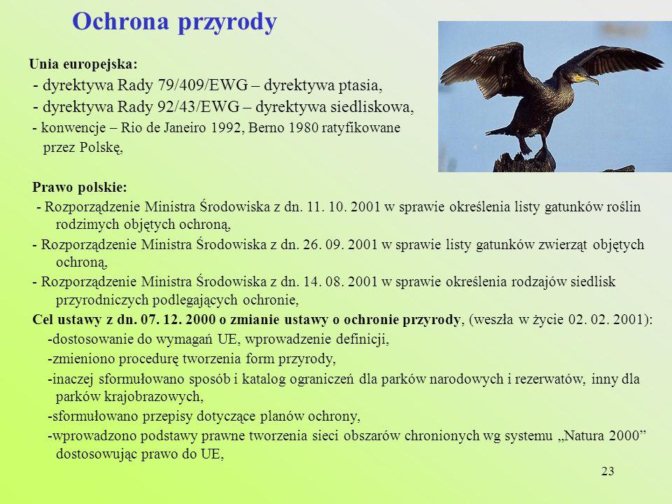 Ochrona przyrody - dyrektywa Rady 79/409/EWG – dyrektywa ptasia,