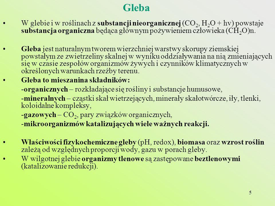 Gleba W glebie i w roślinach z substancji nieorganicznej (CO2, H2O + hv) powstaje substancja organiczna będąca głównym pożywieniem człowieka (CH2O)n.