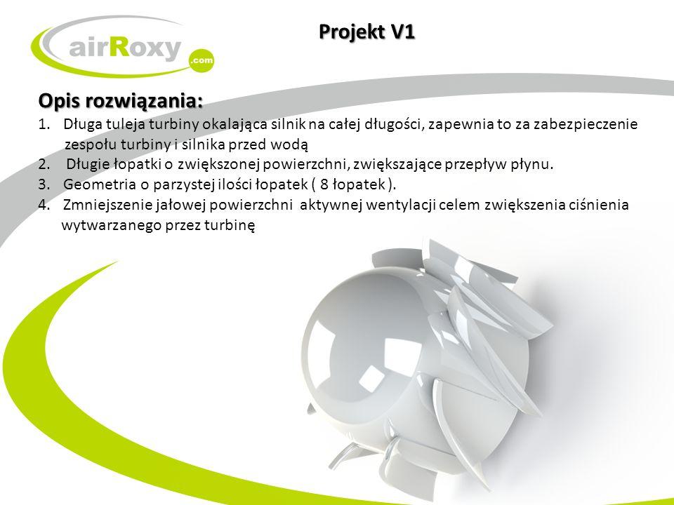 Projekt V1 Opis rozwiązania: