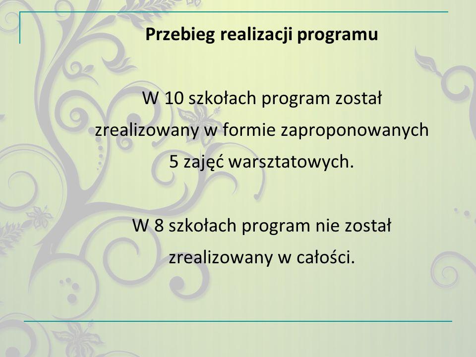 Przebieg realizacji programu