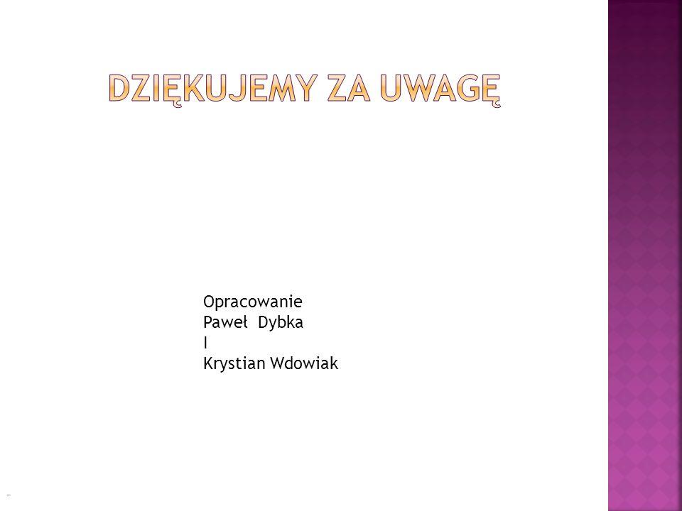 Dziękujemy za uwagę Opracowanie Paweł Dybka I Krystian Wdowiak Cioty