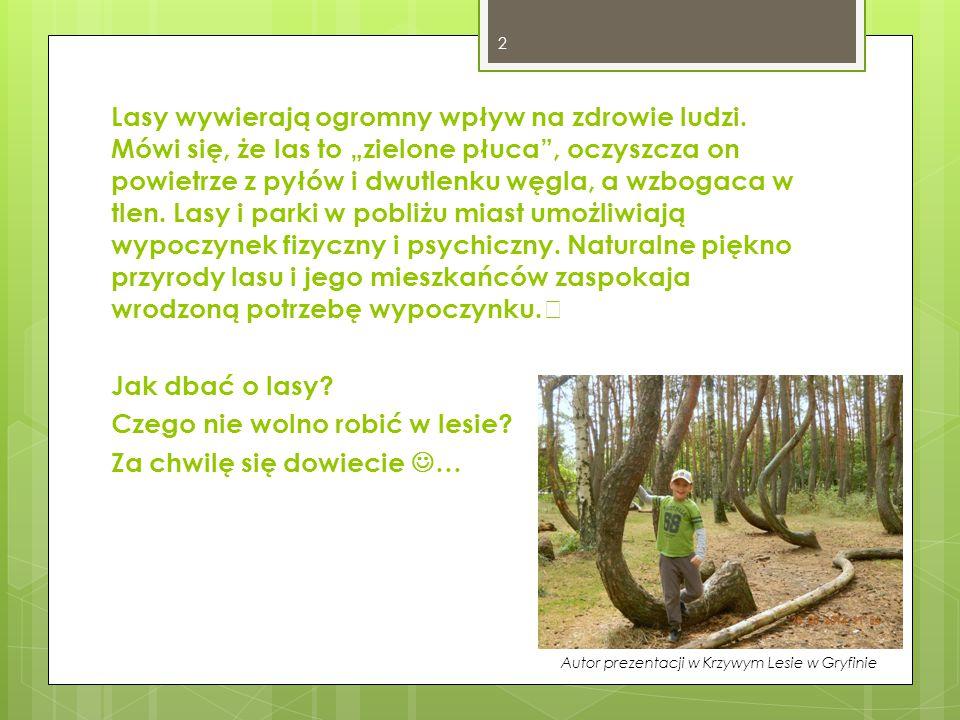 Autor prezentacji w Krzywym Lesie w Gryfinie