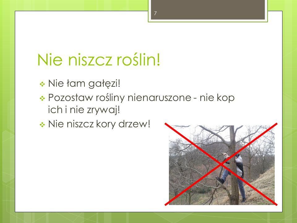 Nie niszcz roślin! Nie łam gałęzi!