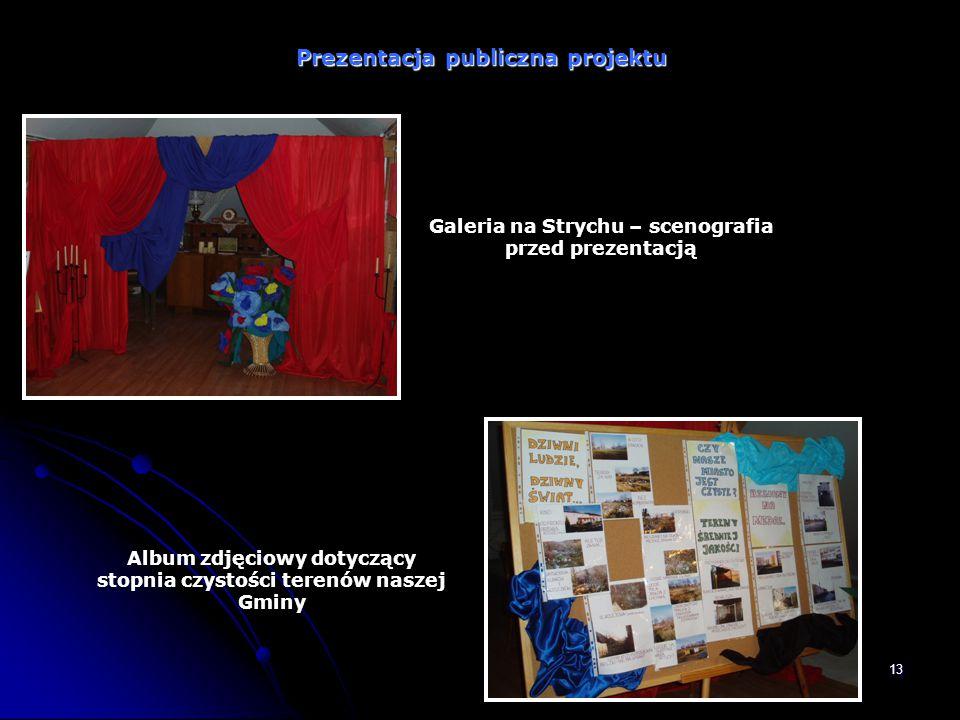 Prezentacja publiczna projektu