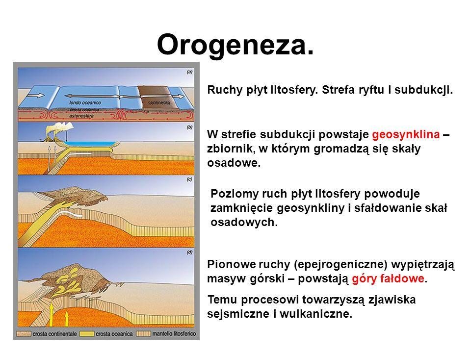 Orogeneza. Ruchy płyt litosfery. Strefa ryftu i subdukcji.