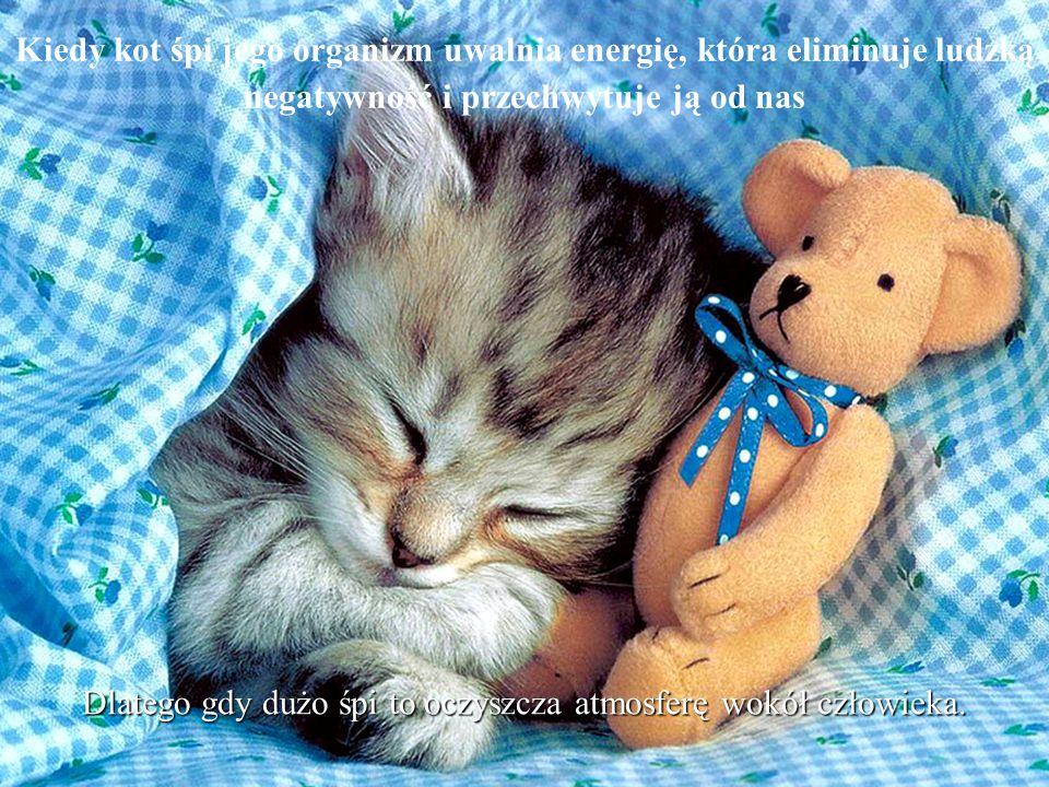 Dlatego gdy dużo śpi to oczyszcza atmosferę wokół człowieka.