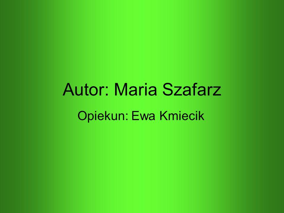 Autor: Maria Szafarz Opiekun: Ewa Kmiecik