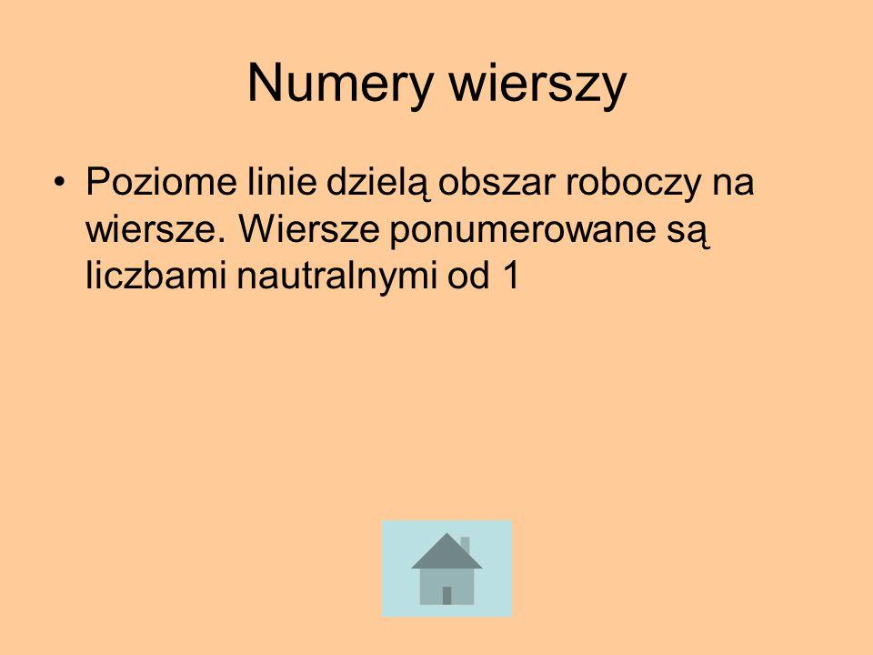 Numery wierszy Poziome linie dzielą obszar roboczy na wiersze.