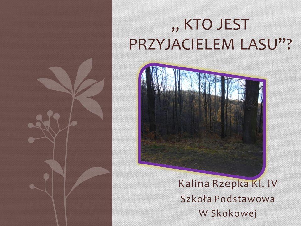 """"""" Kto jest przyjacielem lasu"""