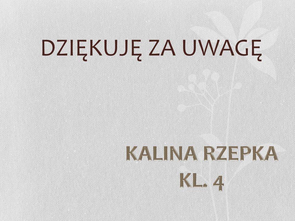 DZIĘKUJĘ ZA UWAGĘ KALINA RZEPKA KL. 4