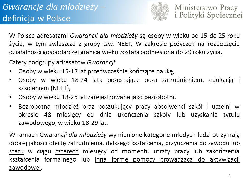 Gwarancje dla młodzieży – definicja w Polsce