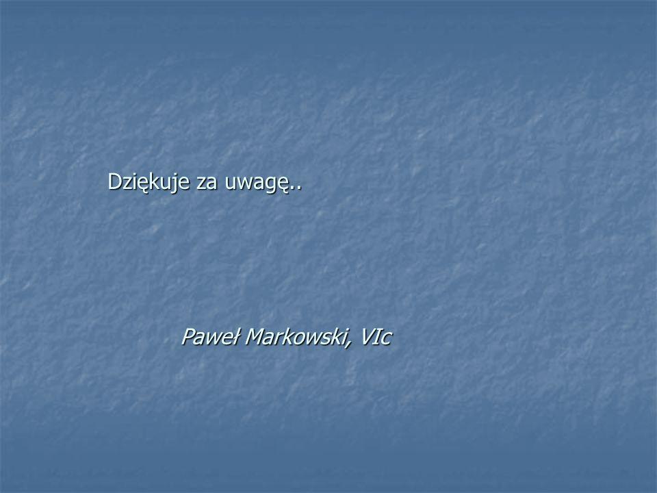 Dziękuje za uwagę.. Paweł Markowski, VIc