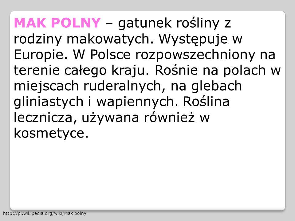 MAK POLNY – gatunek rośliny z rodziny makowatych. Występuje w Europie