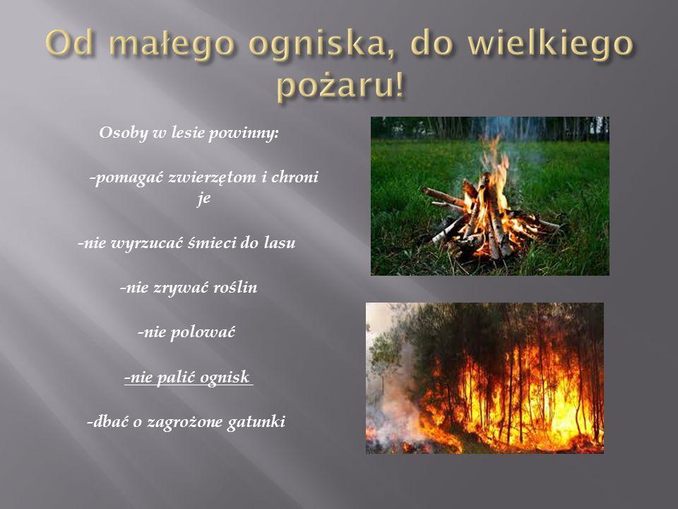Od małego ogniska, do wielkiego pożaru!