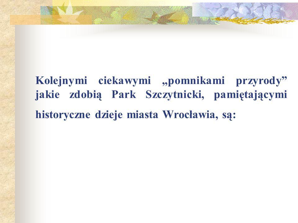 """Kolejnymi ciekawymi """"pomnikami przyrody jakie zdobią Park Szczytnicki, pamiętającymi historyczne dzieje miasta Wrocławia, są:"""