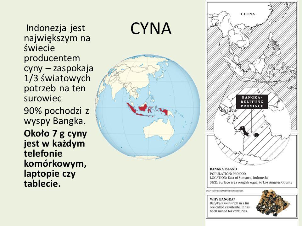 Indonezja jest największym na świecie producentem cyny – zaspokaja 1/3 światowych potrzeb na ten surowiec 90% pochodzi z wyspy Bangka. Około 7 g cyny jest w każdym telefonie komórkowym, laptopie czy tablecie.