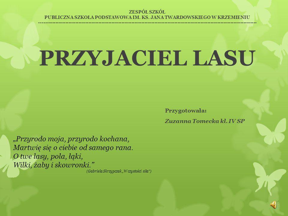 Przygotowała: Zuzanna Tomecka kl. IV SP