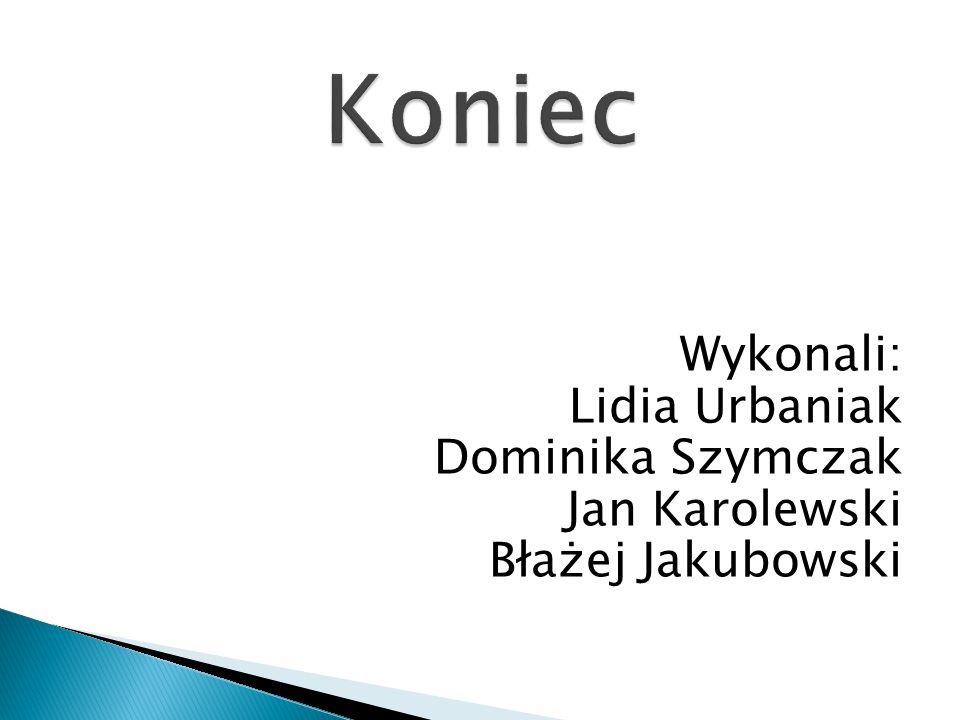 Koniec Wykonali: Lidia Urbaniak Dominika Szymczak Jan Karolewski Błażej Jakubowski