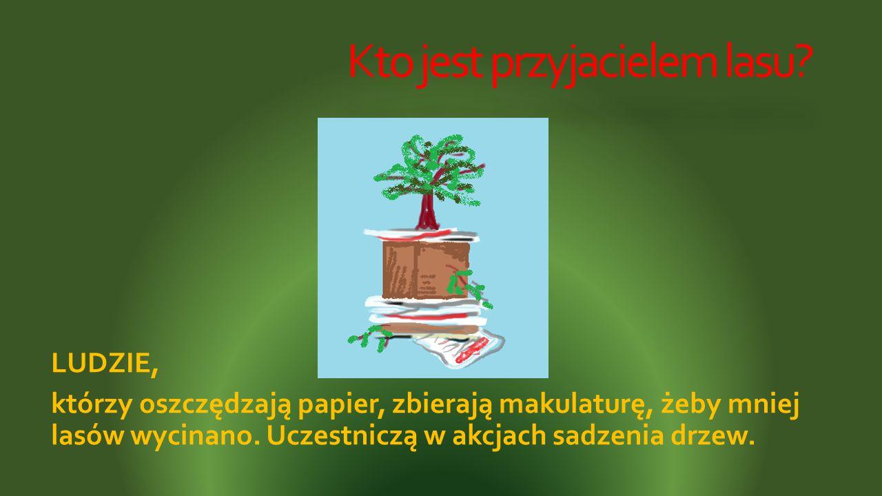 Kto jest przyjacielem lasu