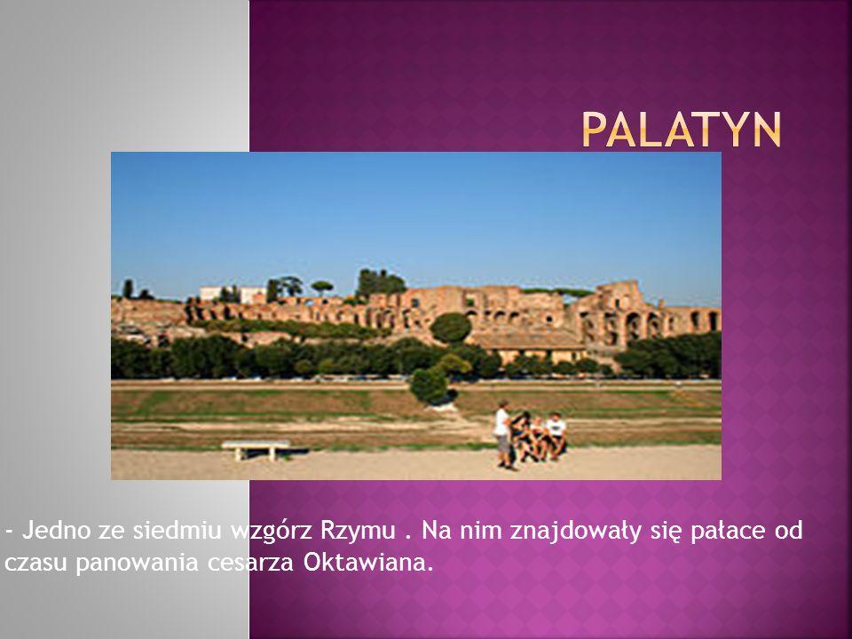 Palatyn - Jedno ze siedmiu wzgórz Rzymu .