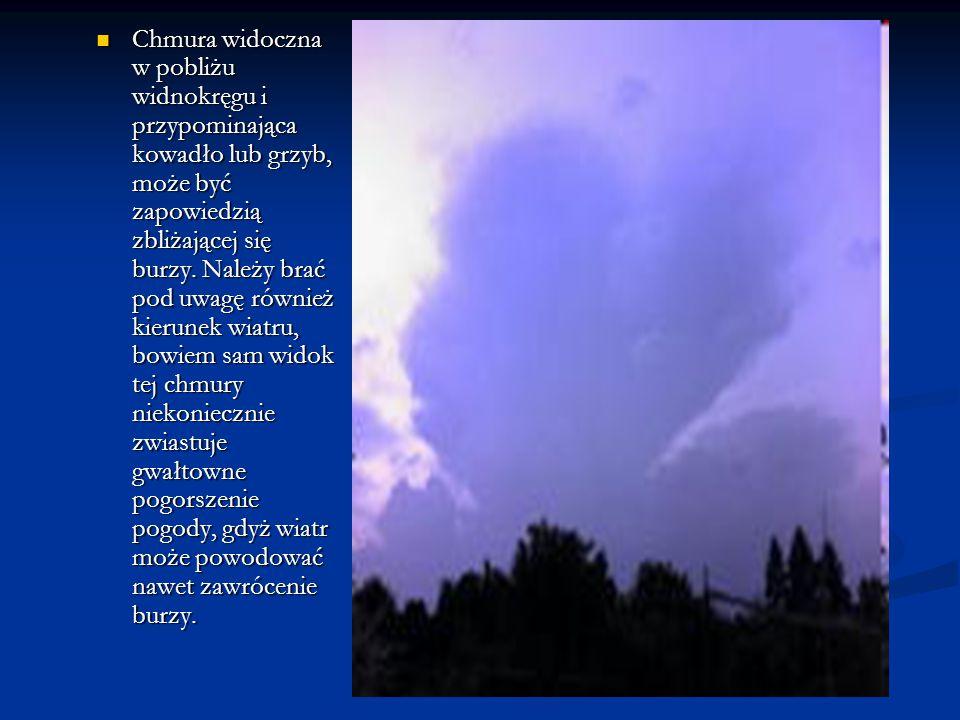 Chmura widoczna w pobliżu widnokręgu i przypominająca kowadło lub grzyb, może być zapowiedzią zbliżającej się burzy.