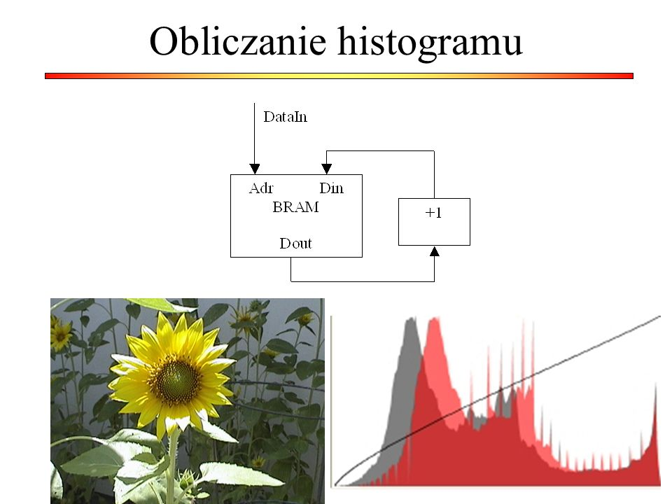Obliczanie histogramu