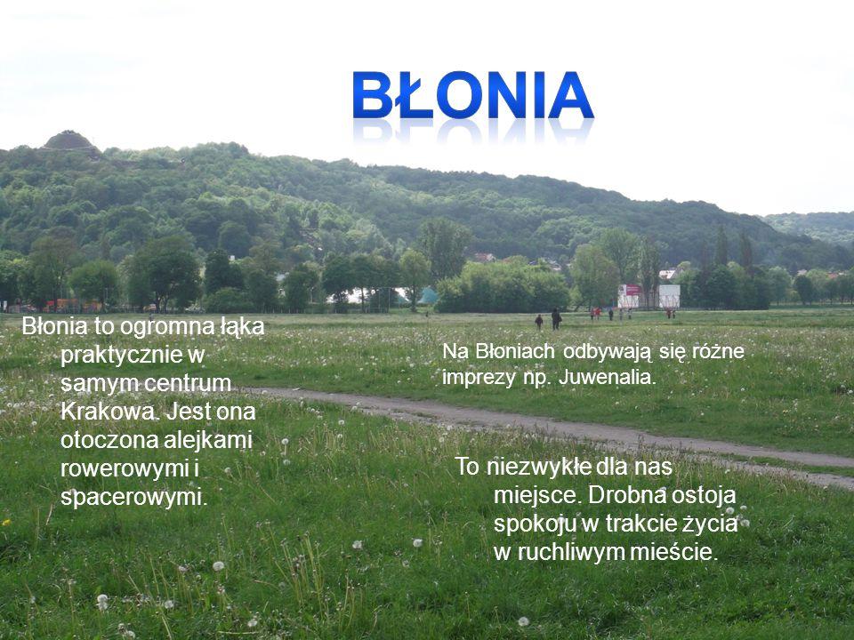 Błonia Błonia to ogromna łąka praktycznie w samym centrum Krakowa. Jest ona otoczona alejkami rowerowymi i spacerowymi.