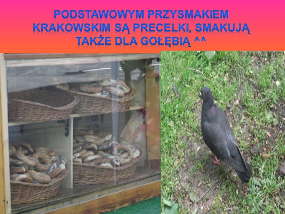 Podstawowym przysmakiem krakowskim są precelki, smakują także dla gołębią ^^