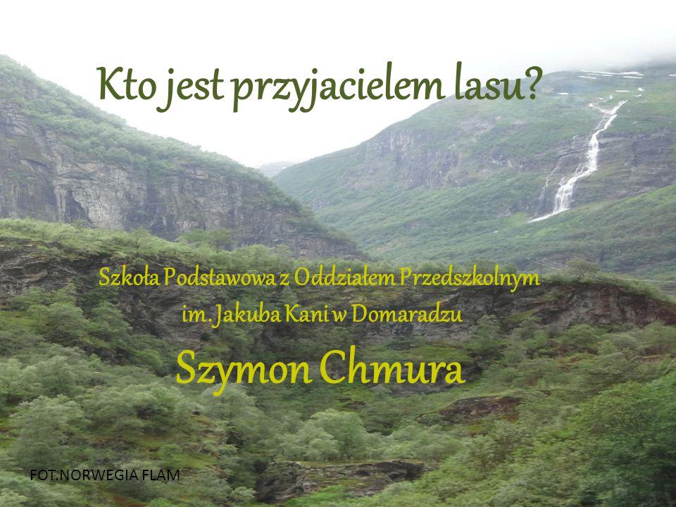 Kto jest przyjacielem lasu Szymon Chmura